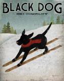 blackskidog