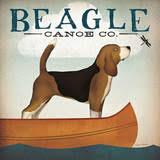 beaglecanoe